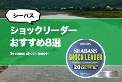 シーバス釣りに最適なショックリーダーおすすめ8選!長さや太さ、結び方を解説!