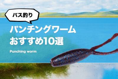 【バス釣り】パンチング用ワームおすすめ10選!間違いなしの鉄板ワームをご紹介!