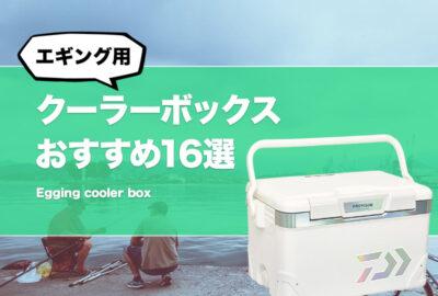 コスパ最強!エギング用クーラーボックスおすすめ16選!安いけど使える!ランガンに適した容量や大きさは?