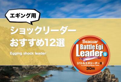 コスパ最強!エギング用ショックリーダーおすすめ12選!ティップランでも使えるイカ釣りリーダーを紹介!